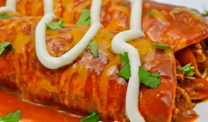 Thanksgiving Day Leftover Enchilada