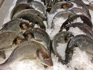At the Local Fishmonger